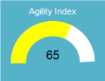AgilityIndex