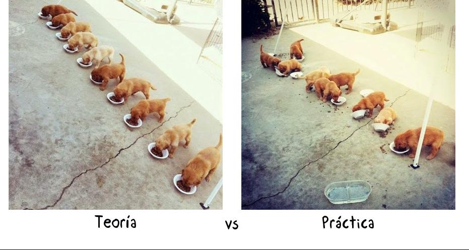TeoríaPráctica.png